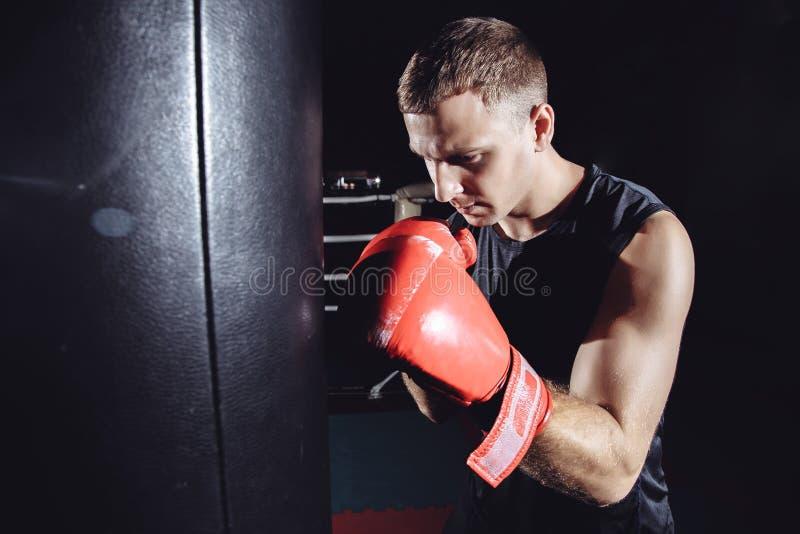 Het mannelijke bokser in dozen doen in ponsenzak stock fotografie