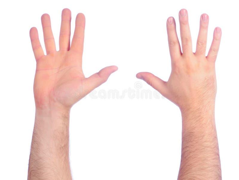Het mannelijke handen tellen