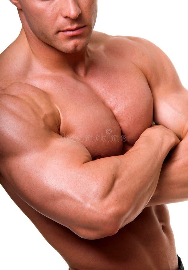 Het mannelijke lichaam. stock foto