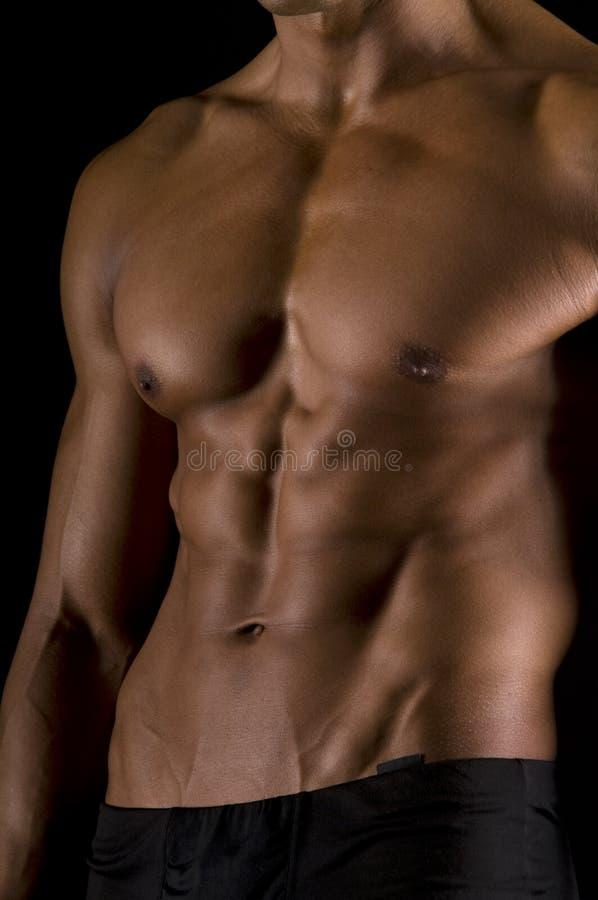 Het mannelijke lichaam. royalty-vrije stock fotografie