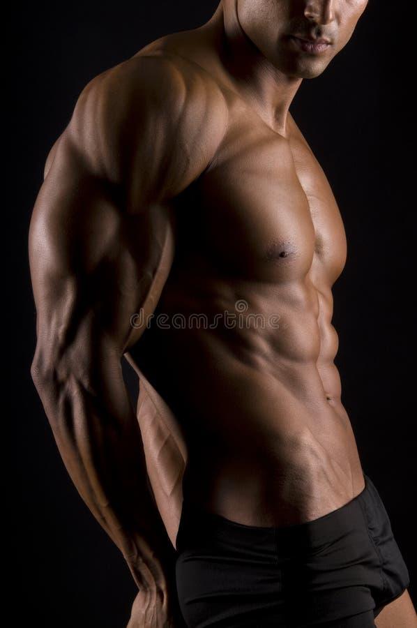 Het mannelijke lichaam. royalty-vrije stock afbeeldingen
