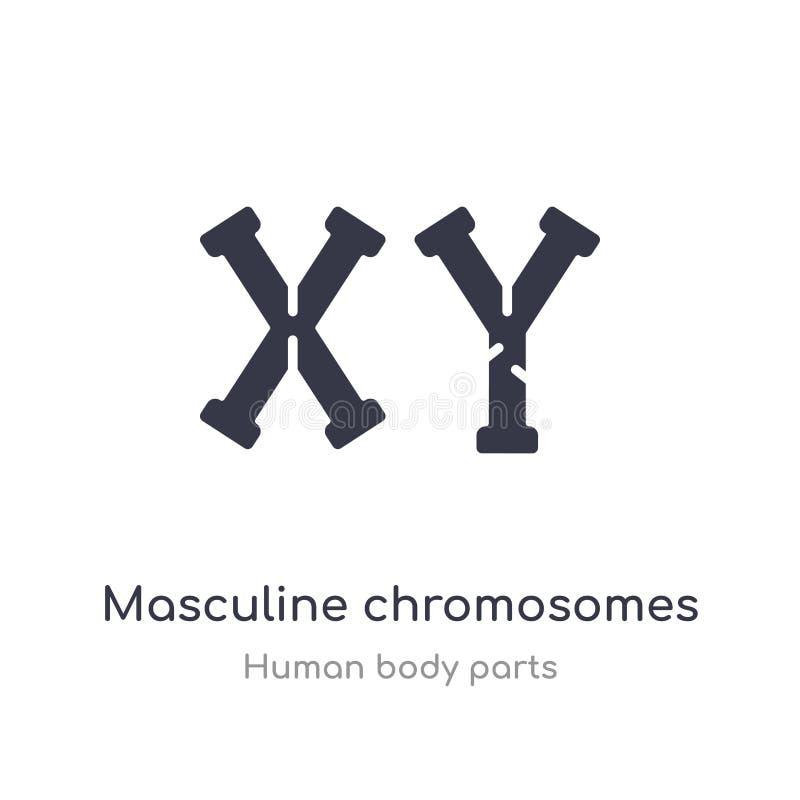 het mannelijke pictogram van het chromosomenoverzicht r editable dunne slag royalty-vrije illustratie