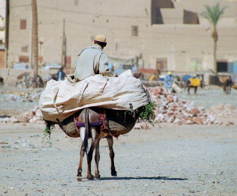 Het Marokkaanse leven, #2 stock foto's