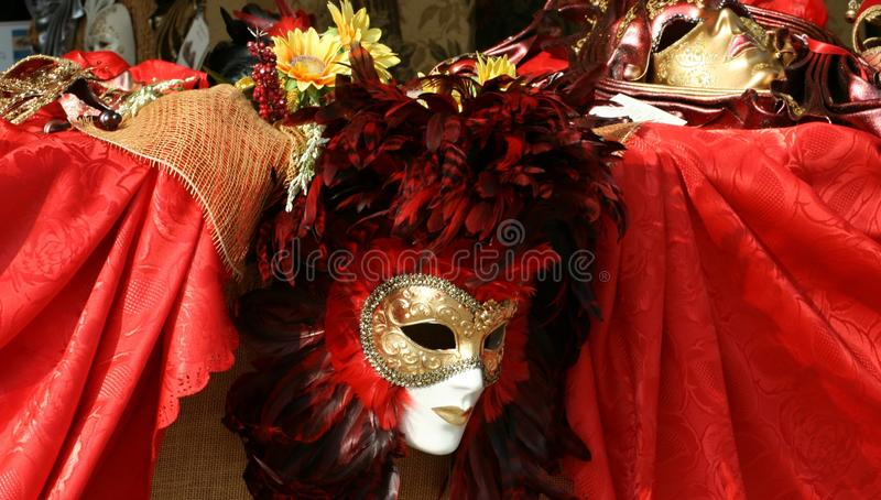 Het masker van Carnaval stock fotografie