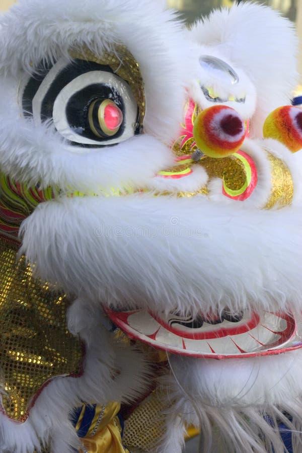 Het Masker van de draak stock foto