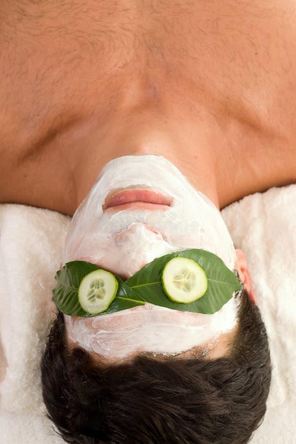 Het Masker Van De Yoghurt Van De Komkommer Royalty-vrije Stock Fotografie
