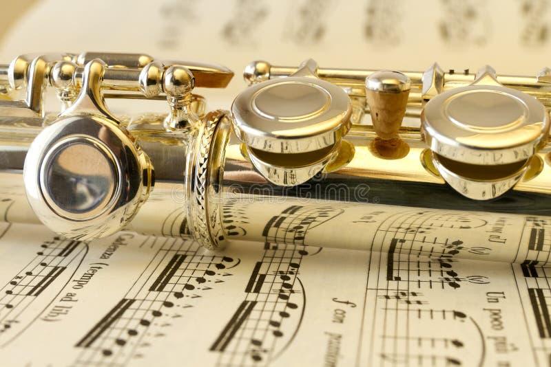 Het mechanisme van de fluit stock afbeelding
