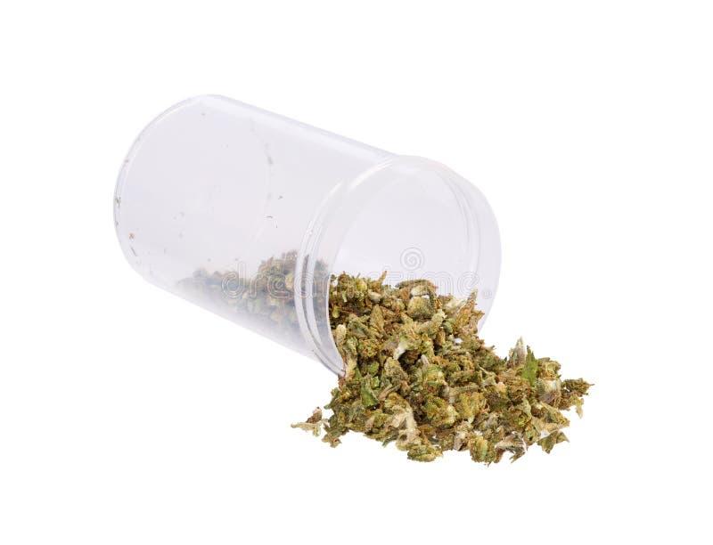 Het medische Marihuana uitgieten van een voorschriftfles tegen w stock foto's