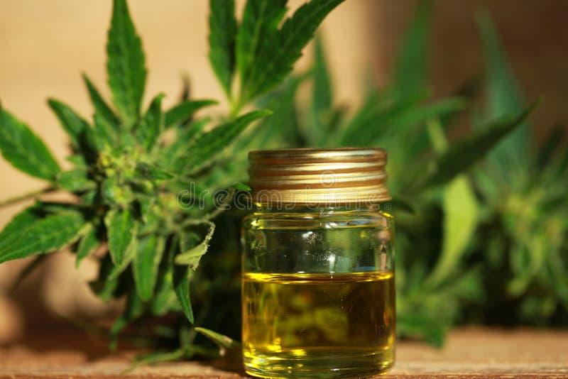 Het medische uittreksel van de cannabisolie en hennepinstallatie royalty-vrije stock afbeeldingen