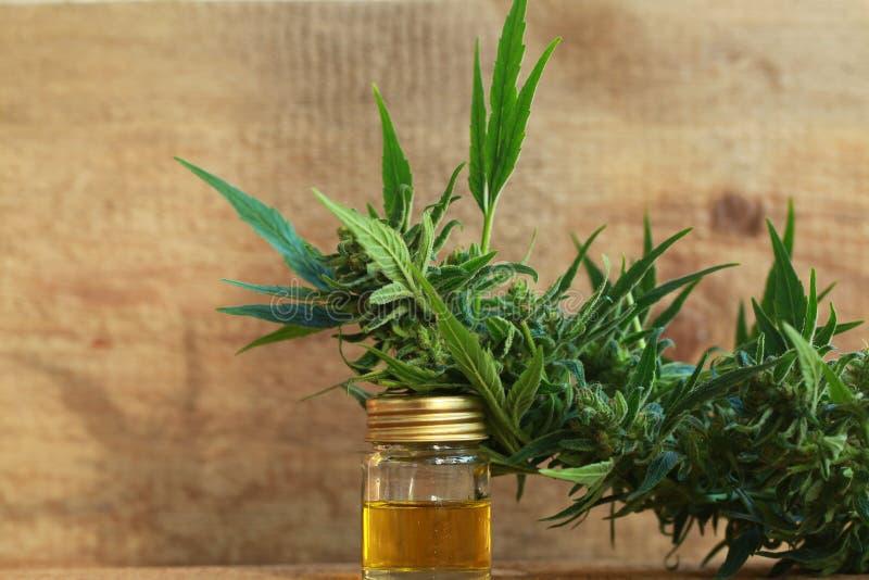 Het medische uittreksel van de cannabisolie en hennepinstallatie royalty-vrije stock afbeelding