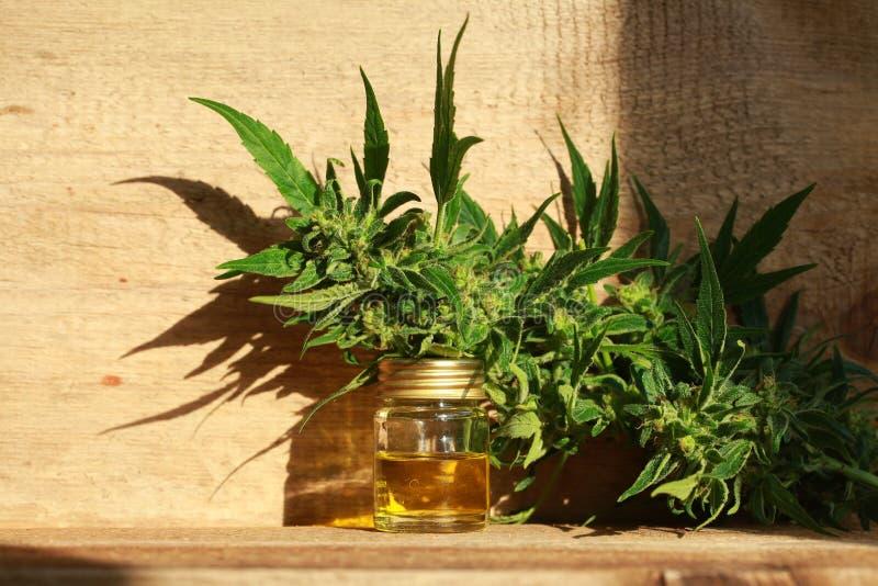 Het medische uittreksel van de cannabisolie en hennepinstallatie stock foto's