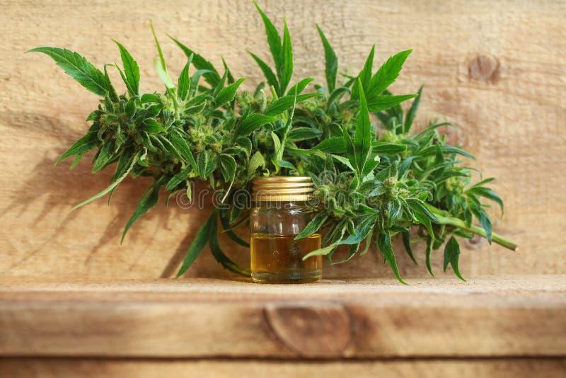 Het medische uittreksel van de cannabisolie en hennepinstallatie royalty-vrije stock fotografie