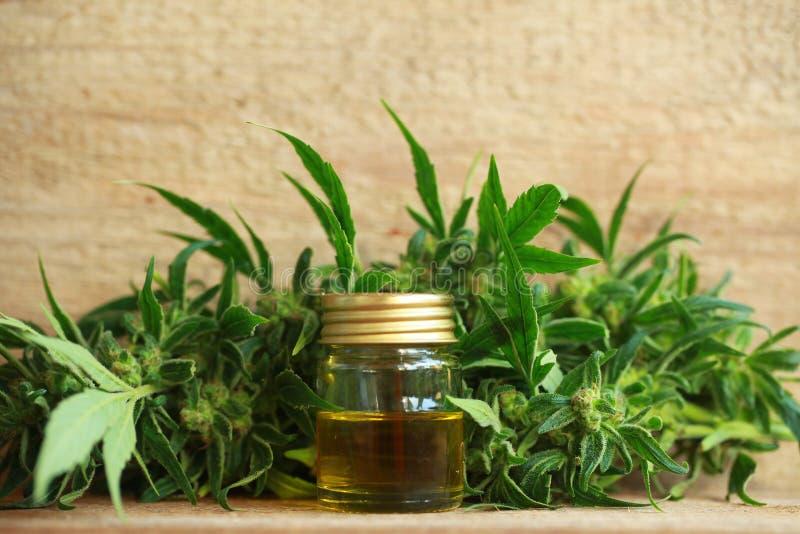 Het medische uittreksel van de cannabisolie en hennepinstallatie stock foto