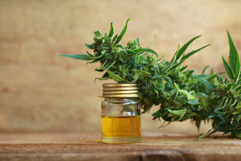 Het medische uittreksel van de cannabisolie en hennepinstallatie royalty-vrije stock foto's