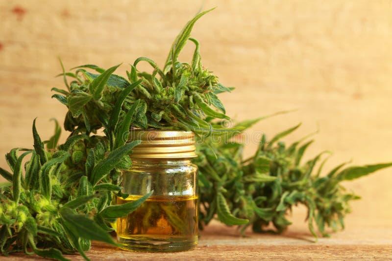 Het medische uittreksel van de cannabisolie en hennepinstallatie stock afbeeldingen
