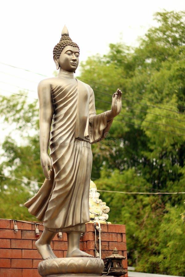 Het mediteren Buddhas royalty-vrije stock afbeeldingen