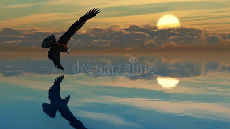 Het Meer A1 van de adelaar stock foto's