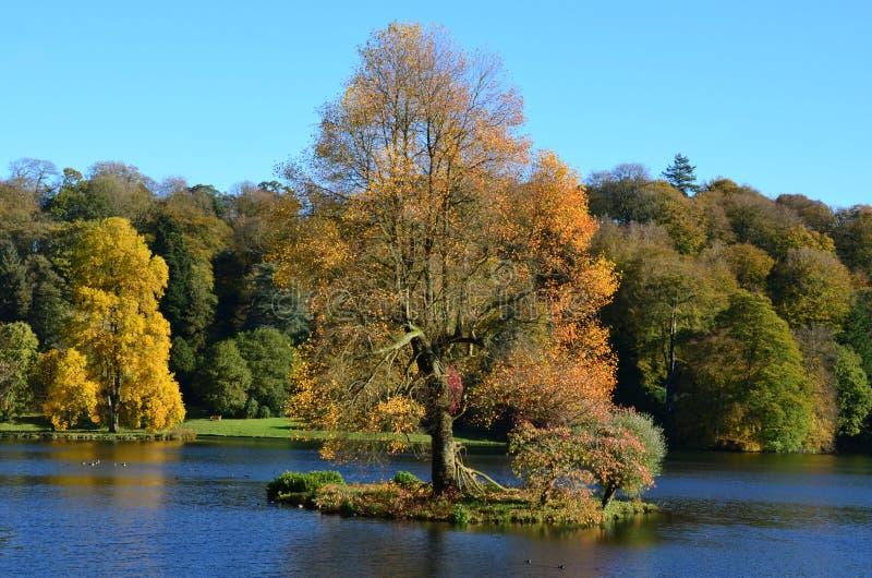 Het meer en Autumn Colours, Stourhead-Tuinen, verwelken royalty-vrije stock foto