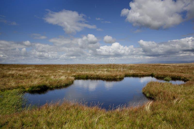 Het meer op Everzwijn viel stock foto