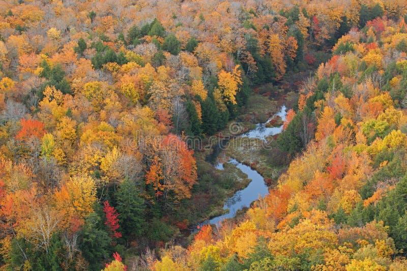 Het Meer van Autumn Forest en van de Stroom van de Wolken royalty-vrije stock foto's