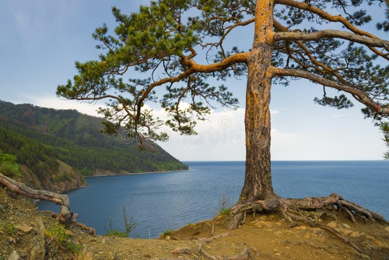 Het Meer van Baikal stock foto's