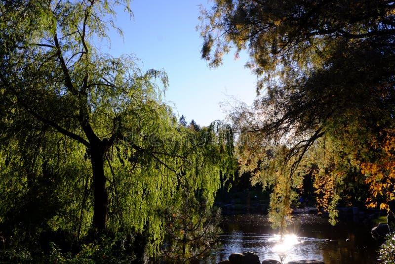 Het meer van is 2 benieuwd royalty-vrije stock afbeeldingen
