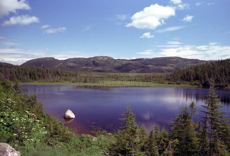 Het Meer van de Berg van Newfoundland royalty-vrije stock fotografie