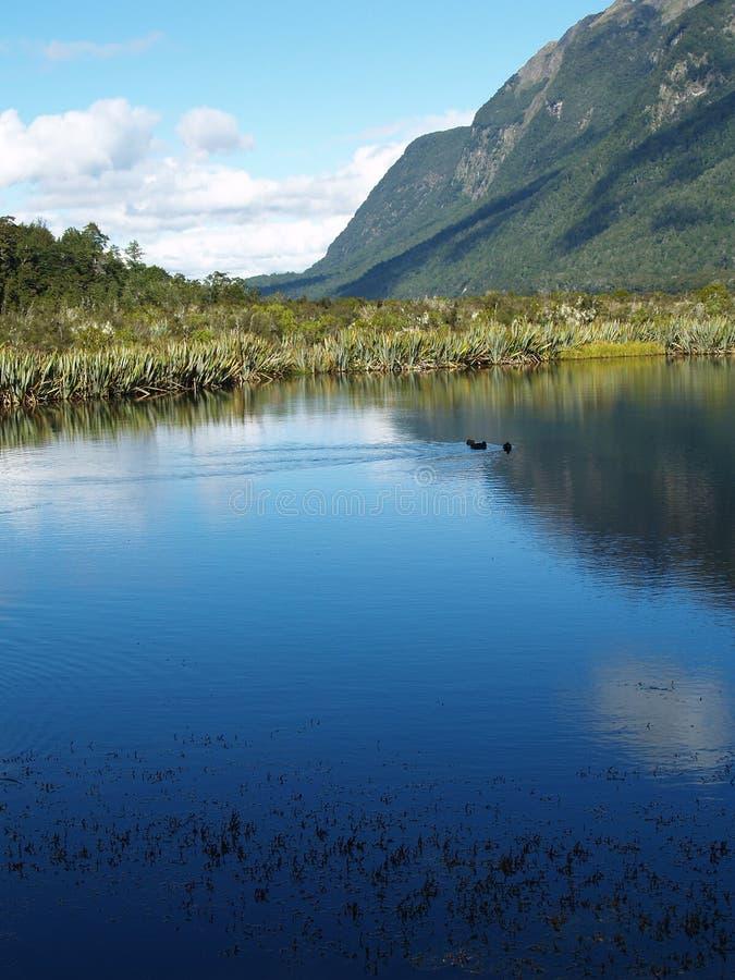 Het Meer van de Berg van Nieuw Zeeland stock foto