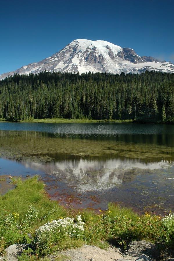 Het meer van de bezinning bij Regenachtiger Onderstel, de Staat van Washington royalty-vrije stock afbeeldingen