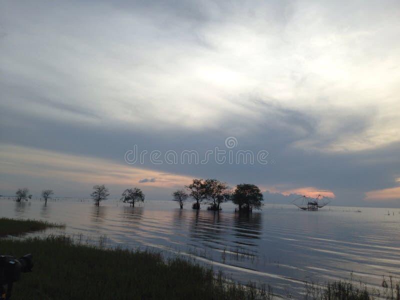 Het meer van de ochtend royalty-vrije stock foto
