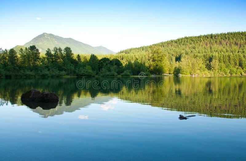 Het meer van de ratelslang stock foto's