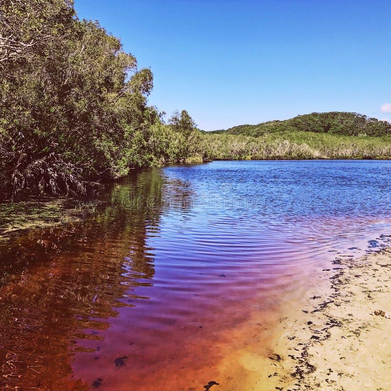 Het Meer van de theeboom, Byron Bay, NSW, Australië stock afbeeldingen