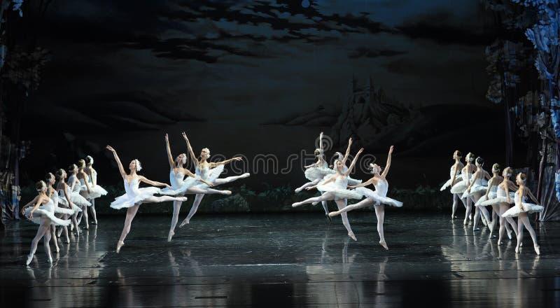 Het Meer van de vrij:maken-balletzwaan royalty-vrije stock afbeelding