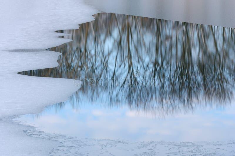 Het Meer van de winter met Bezinningen stock afbeeldingen
