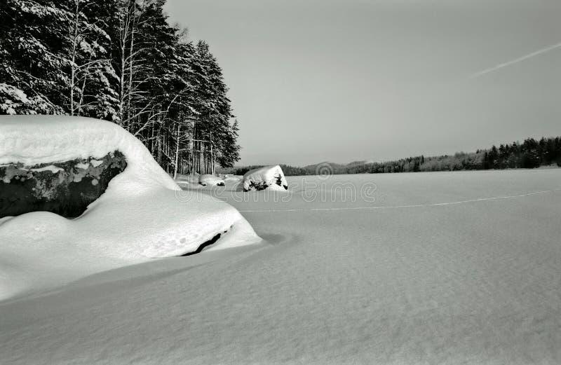Download Het Meer Van De Winter - Wijnoogst Stock Afbeelding - Afbeelding bestaande uit zwart, winter: 287037