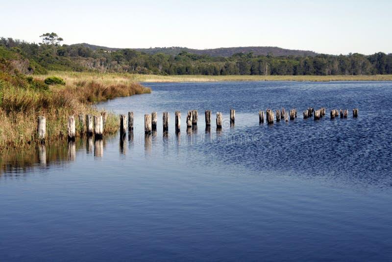 Het meer van de zomer stock foto