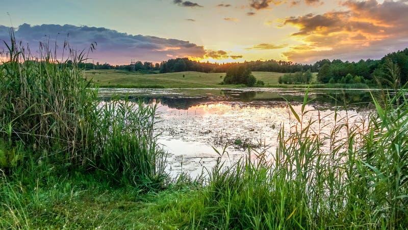 Het meer van de zomer bij zonsondergang stock foto