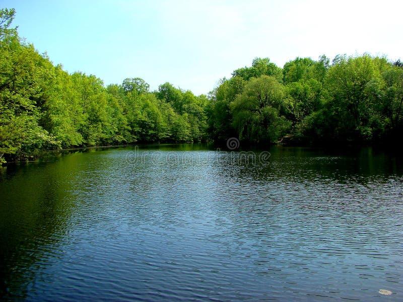 Het meer van de zomers royalty-vrije stock foto's
