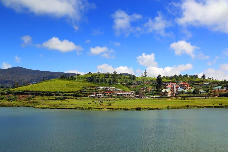 Het meer van Gregory in Nuwara Eliya - Sri Lanka royalty-vrije stock fotografie