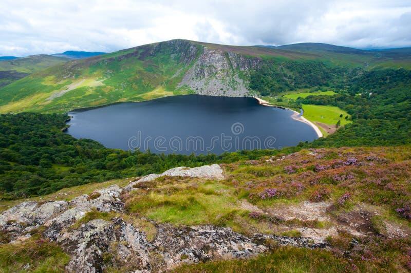 Het meer van Guiness in Ierland stock foto