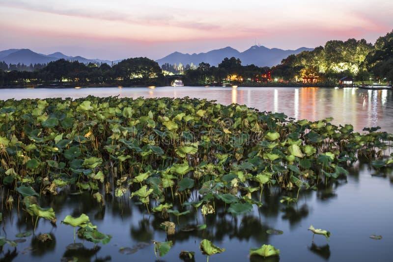 Het meer van het Hangzhouwesten bij nacht royalty-vrije stock afbeeldingen