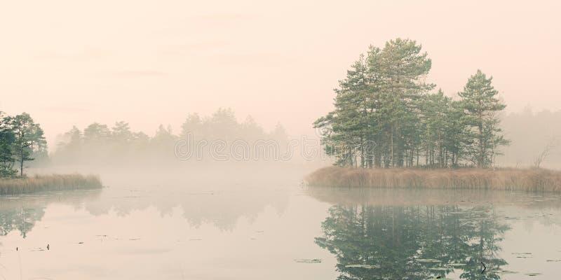 Het meer van het moeras stock afbeelding