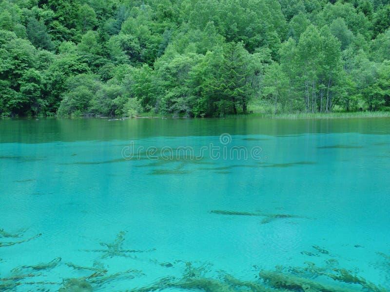 Het meer van Jiuzhaigou stock fotografie