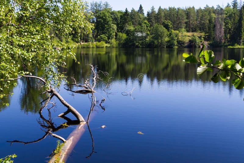 Het Meer van Ladoga royalty-vrije stock fotografie