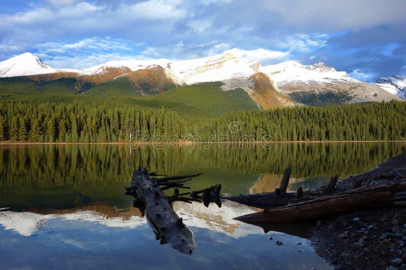 Het meer van Maligne, het Nationale Park van de Jaspis, Canada royalty-vrije stock afbeeldingen