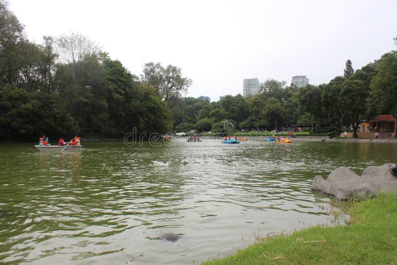 Het meer van Mexico-City royalty-vrije stock afbeeldingen