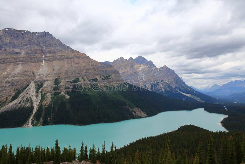 Het Meer van Peyto, Nationaal Park Banff stock foto's