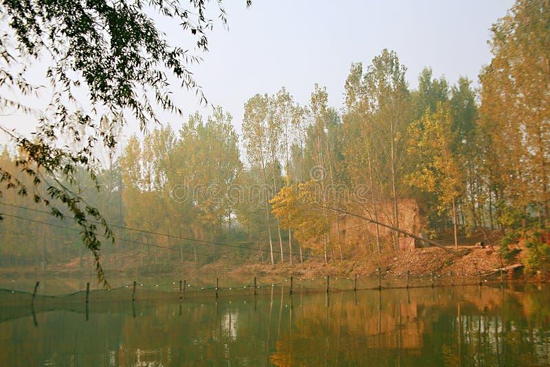 Het Meer van Zhengzhoudonglin royalty-vrije stock fotografie