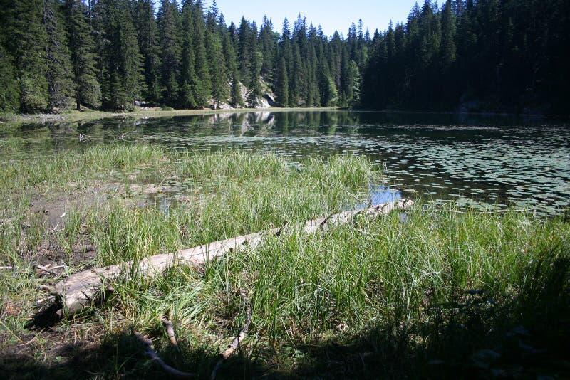 Het meer van Zminje stock afbeelding