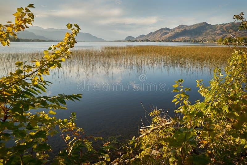 Het Meer van zonsopgangosoyoos, Brits Colombia stock foto's